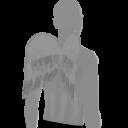 Avatar Cupid Wings