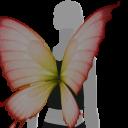 Avatar Butterfly wings