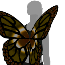 Avatar Brown butterfly wings