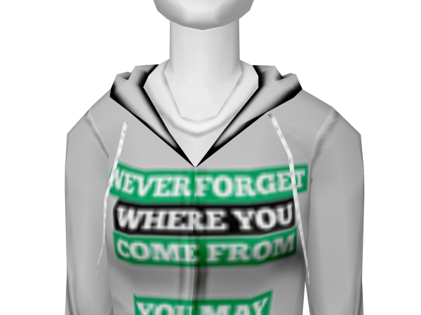 Avatar You may have to go back someday hoodie