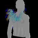 Avatar Wolcom wings